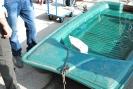 Free Fall Rescue Boat 2014